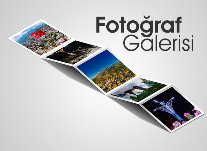 bahçe fotoğraf galeri